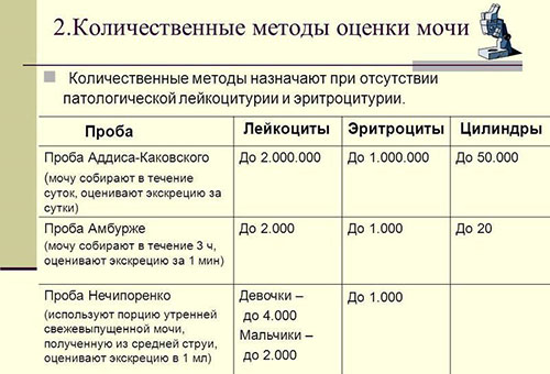Количественные методы оценки результатов анализа мочи