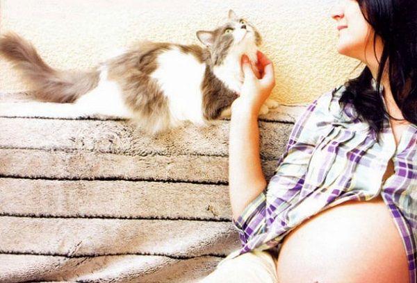Беременная девушка и кошка