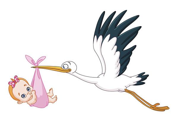Аист несет малыша