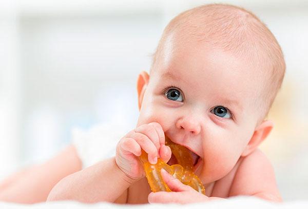Малыш грызет прорезыватель прорезыватель