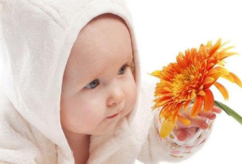 Пятимесячный ребенок тянется за цветком