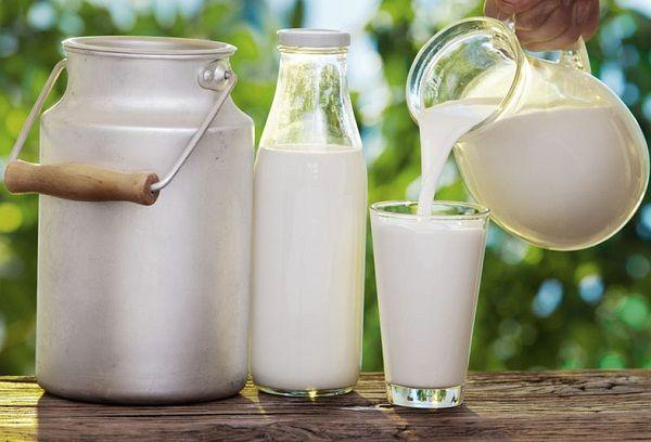 молоко в бидоне и бутылке