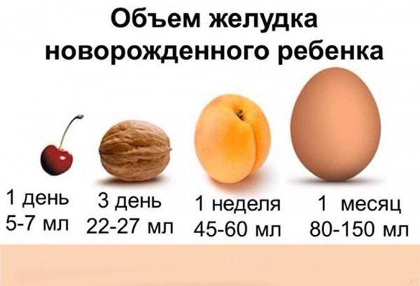 Размер желудка грудничка