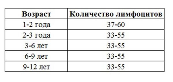 Таблица №1. Норма лимфоцитов в крови у ребенка до года